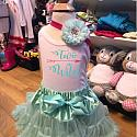 Mint birthday outfit 2T